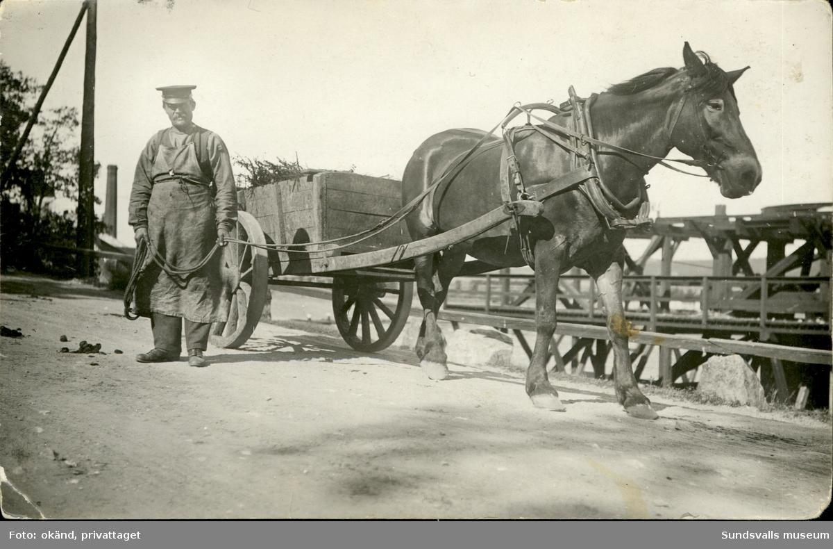 Vykort med motiv av en stående man med häst och vagn. Enligt texten på baksidan: Johan Lundkvist Svartvik 4/6 1921.