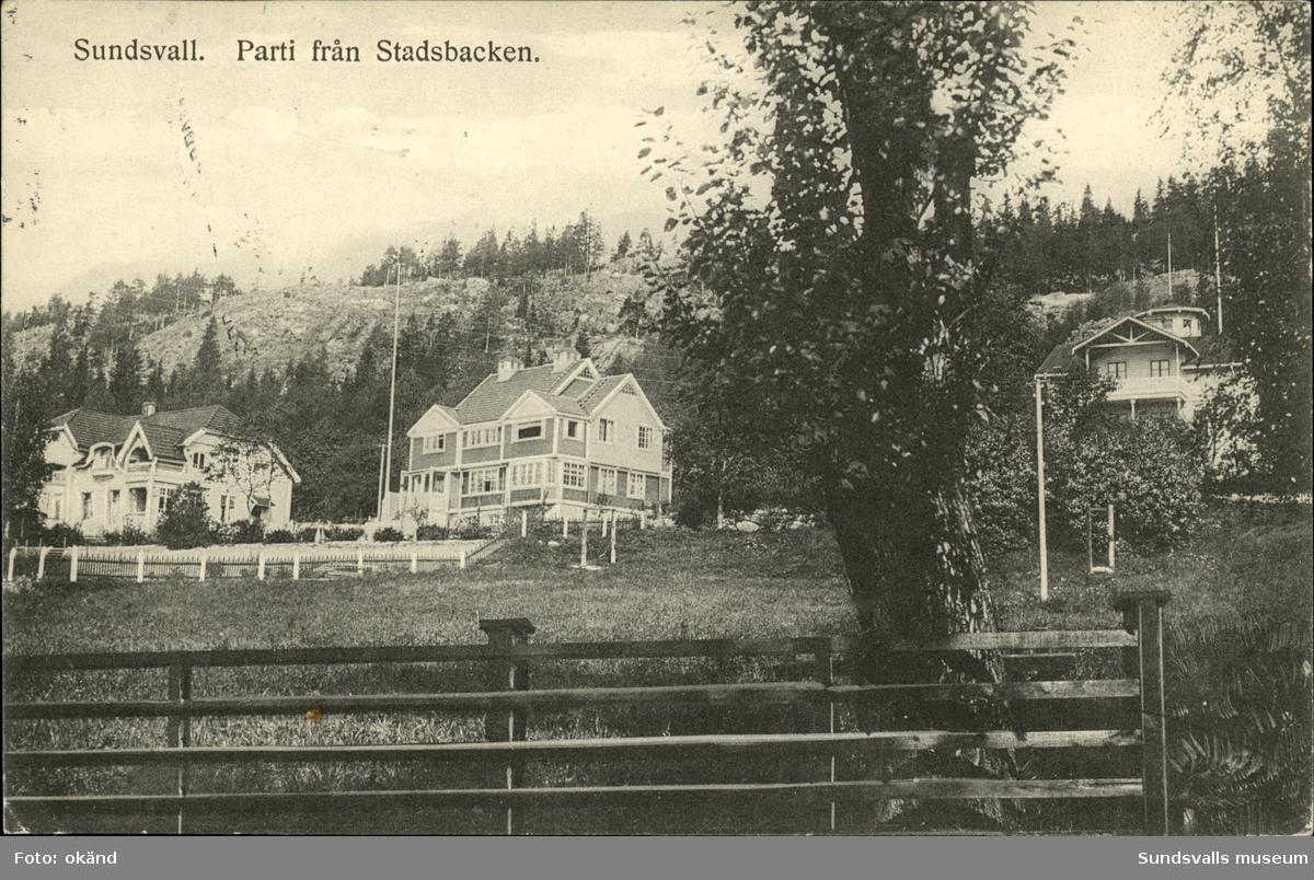 Vykort med motiv över parti från Stadsbacken i Sundsvall.