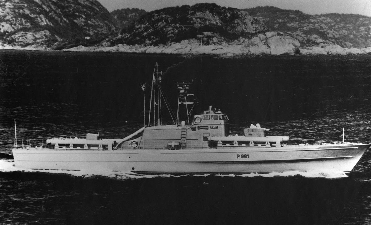 "Motiv: Foto av P 981 - torpedobåten KNM ""Rapp"" snøgg-klasse torpedobåt."