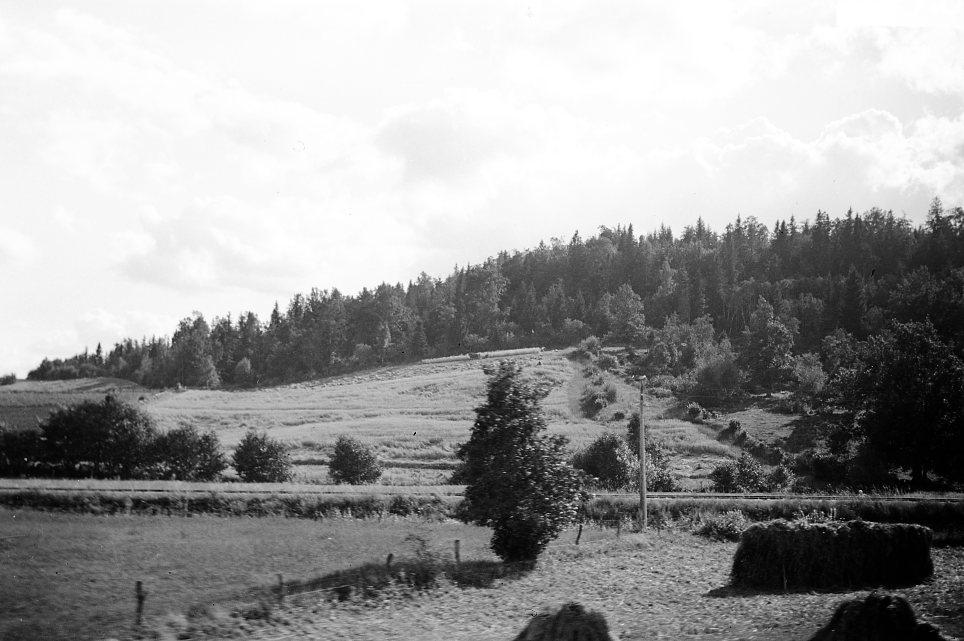Järnväg genom landskap.