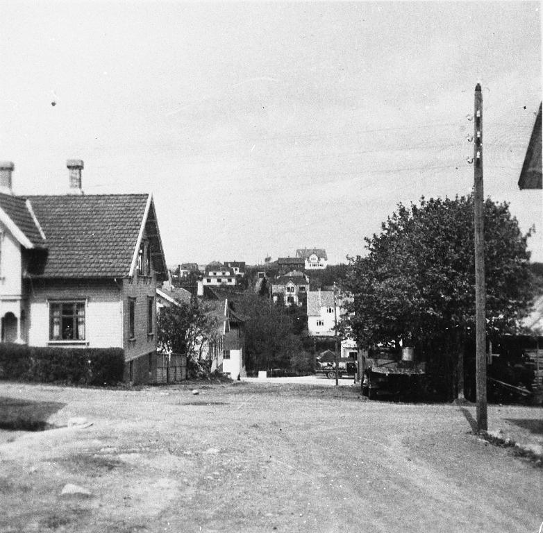 Frå Parkvegen mot Brynehaugen. Huset til venstre var bygd av Petter Lende ca 1910. Dr. Carl Aasland bygde nytt her i 1950 åra. Eigar i 1990 er optikar Arne Aarsheim. Midt i biletet bar kan ein sjå fødeheimen på Brynehaugen.