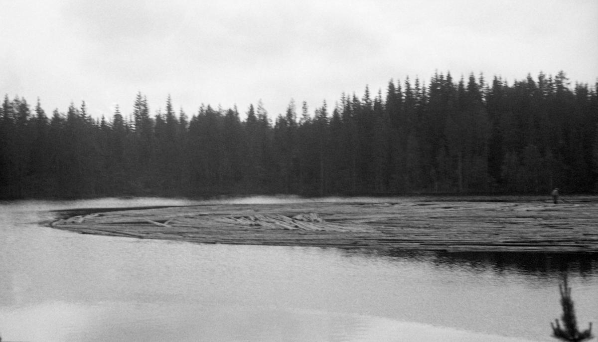 Tømmer i vannet. Skog rundt vannet. Fløtere i arbeid.