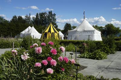 Middelalderleir med middelaldertelt, og blomstrende peoner i Urtehagen.. Foto/Photo