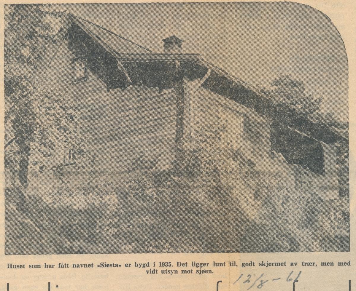 Avisartikkel om Olga og Lars Mørk på hytta på Langebåt. 12.8-61