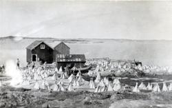 Klippfisktørke i Valøya