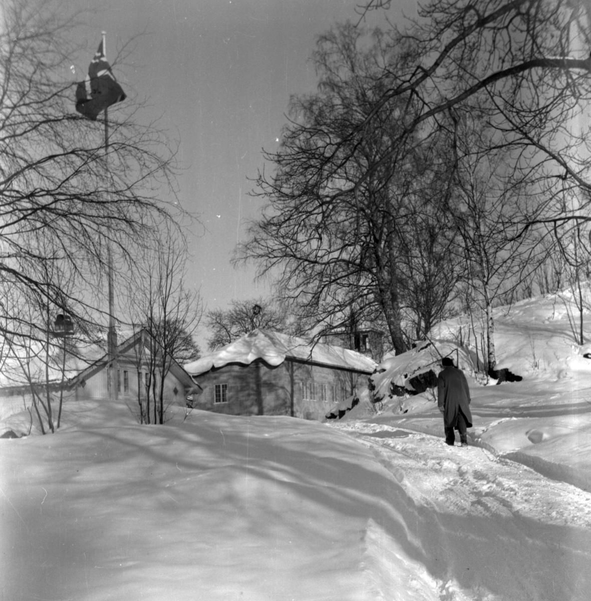Aust-Agder-Museets første byggetrinn  på Langsæ. Kranselag med flagget tl topps. Vinter med snøl. Fotografert fra veien opp mot tunet på Langsæ, flaggstangen t.v. i bildet.