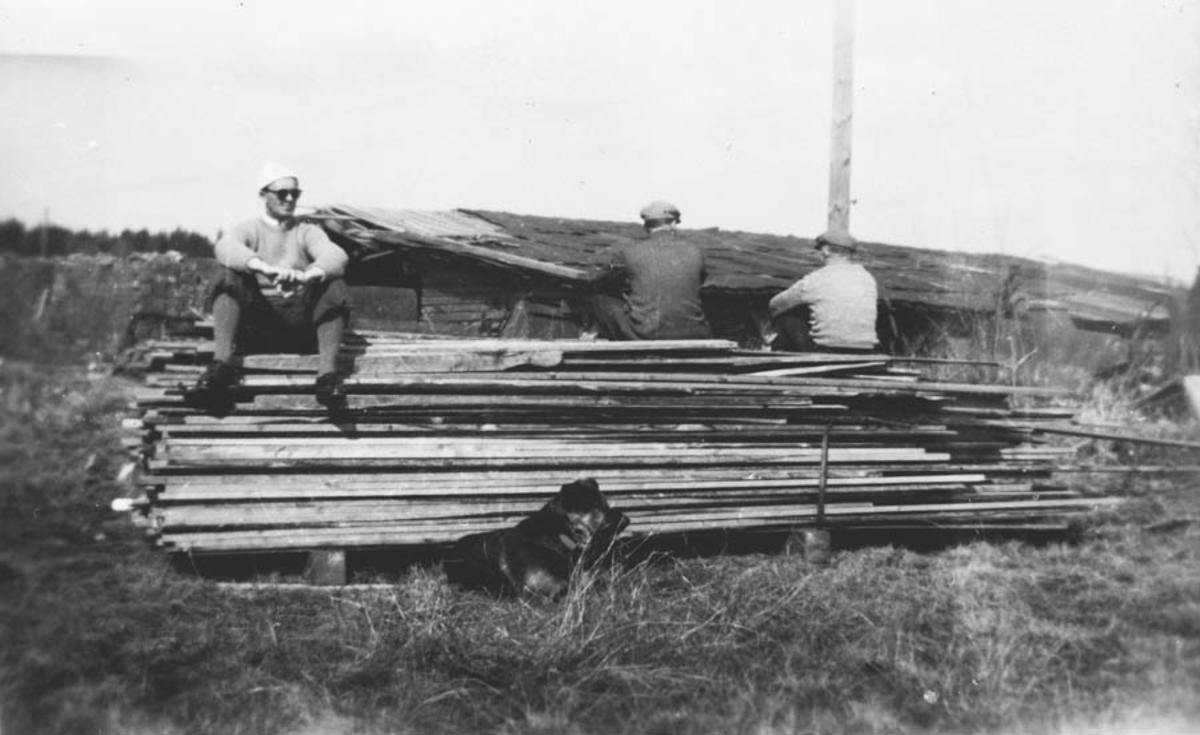 3 menn og en hund sitter på et lass med tømmer.