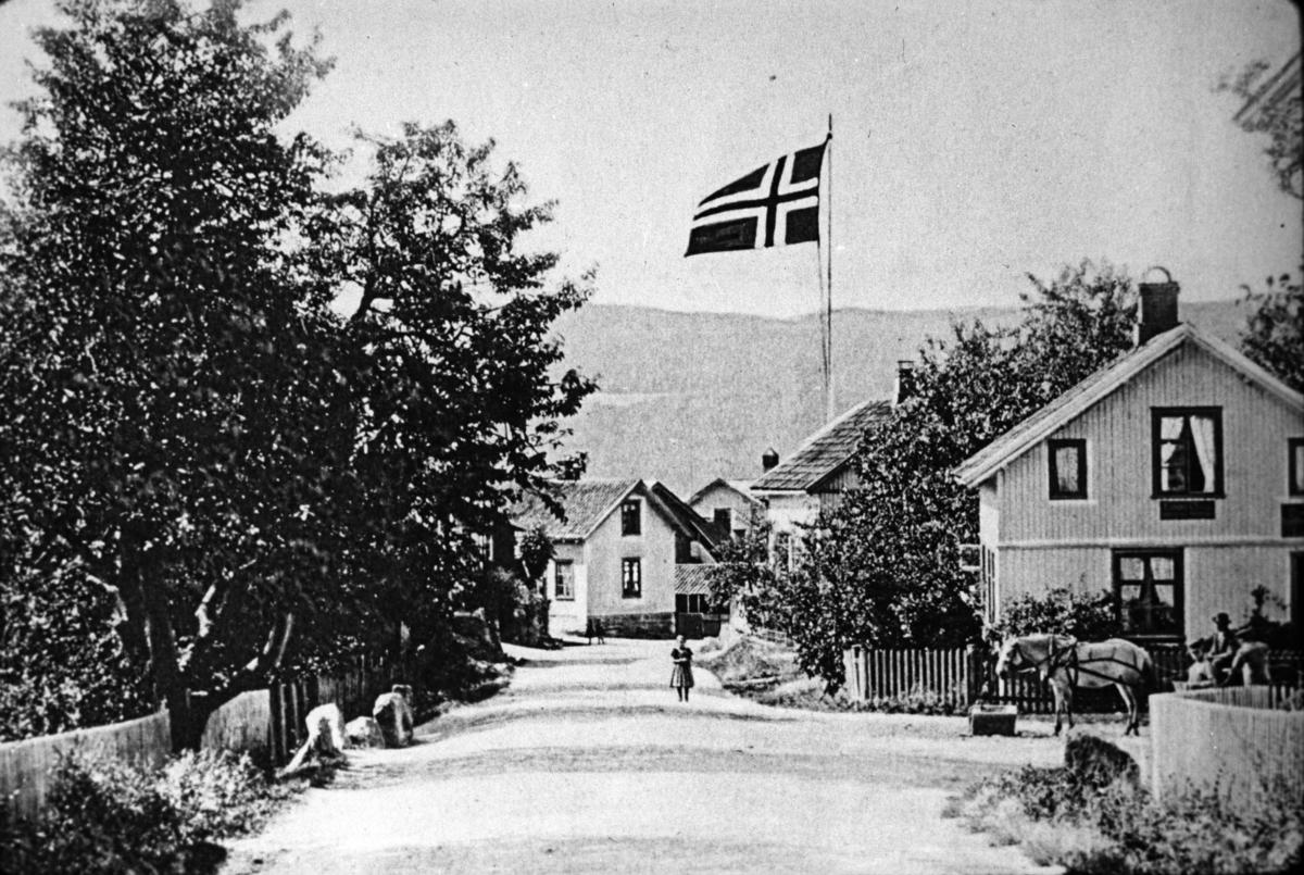Gateparti, tettsted, norsk flagg, bolighus, hest, vogn, folk