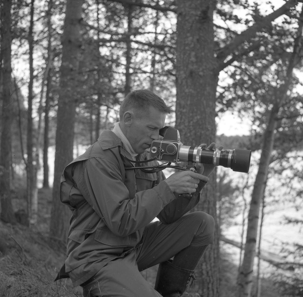 Kjell Søgård