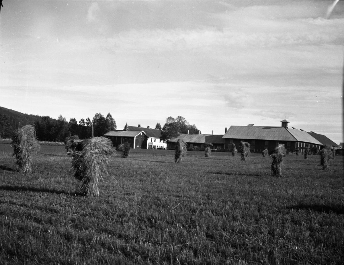 Nordre Rustad