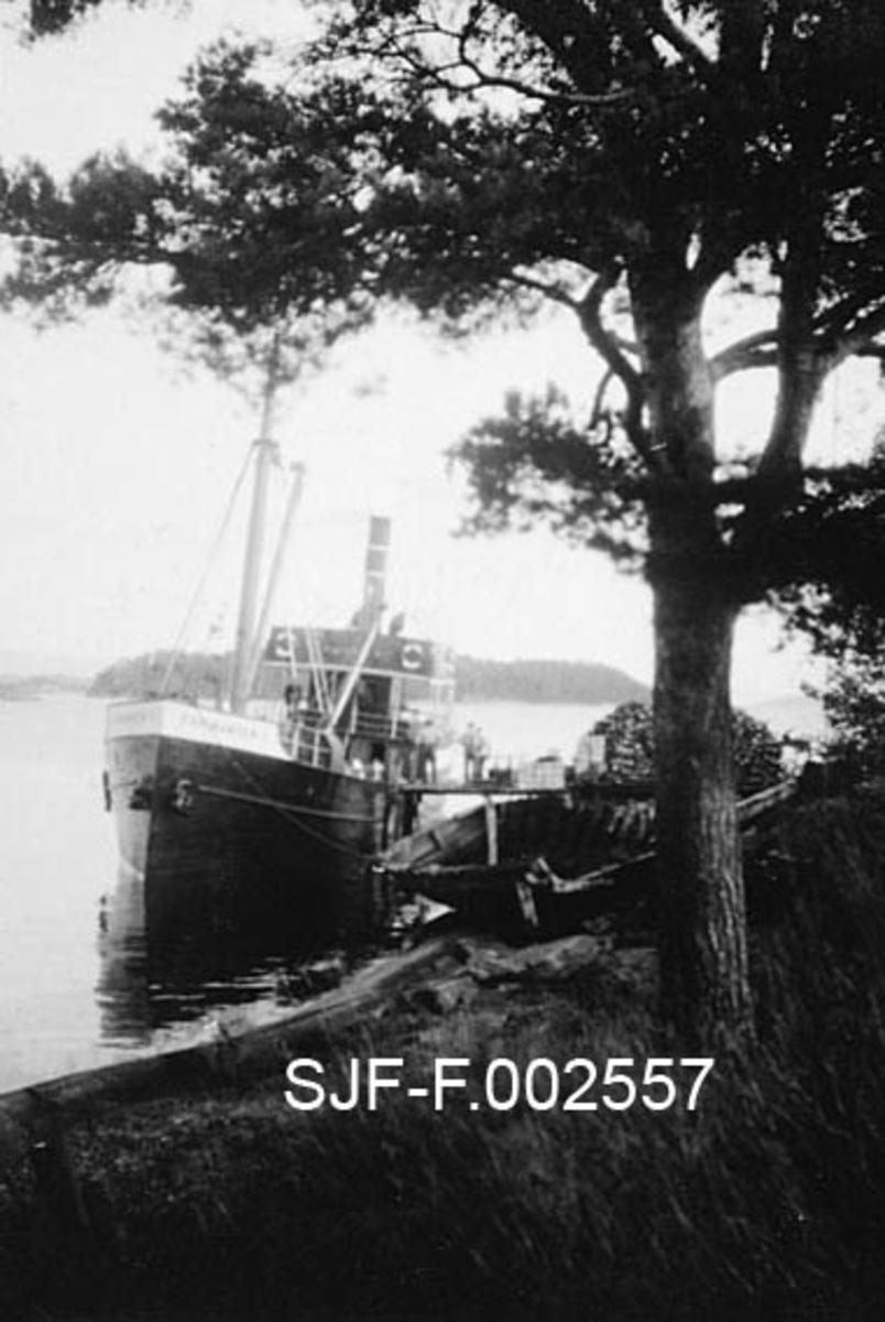 """Dampbåten """"Farmanden"""" fra Drammen, fotografert ved kaia til Schwencke & Co's Eftf. på Børsholmen i Asker.  Fotografiet er tatt en sommerettermiddag, fra en posisjon ved stranda, mot båtens baugparti.  I forgrunnen til høyre skjermer ei forholdsvis stor furu fotografen mot ettermiddagssola.  Båten hadde stålskrog, som i hovedsak var malt i en mørk farge.  Tre-fire mannsskikkelser skimtes ytterst på kaia.  Litt innenfor, delvis skjult bak stammen på det nevnte furutreet, lå en diger vedstabel.  Vedforbruket ved fabrikkanlegget til Schwencke & Co., som framstilte bek og andre tjærebaserte produkter med varmeprosesser, var antakelig stort."""