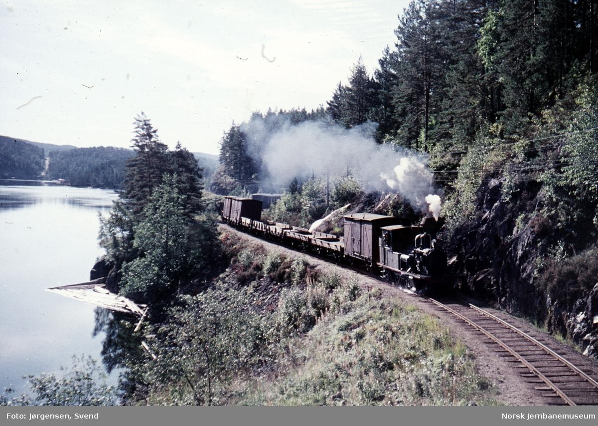 Godstog 5661, trukket av damplokomotiv nr. 2, ved innkjør til Iveland stasjon