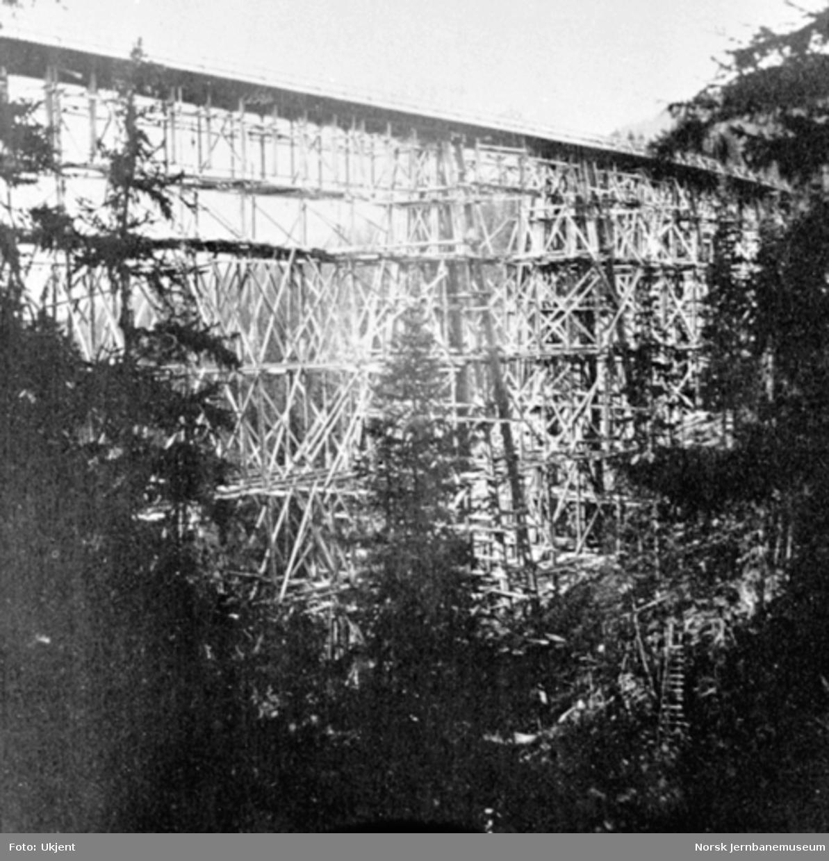 Drøia viadukt, fotografert fra nede i dalen