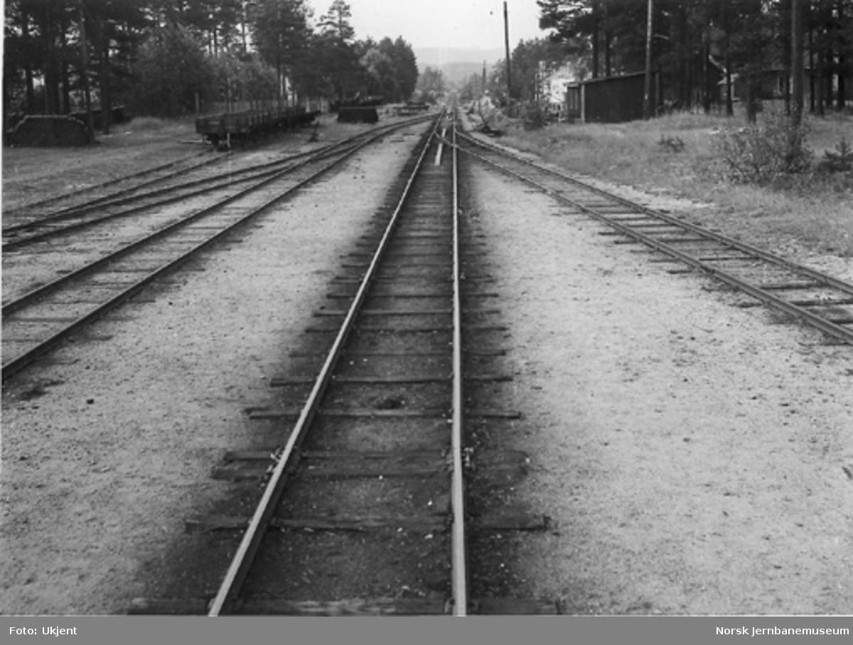 Utkjøring fra Evje stasjon