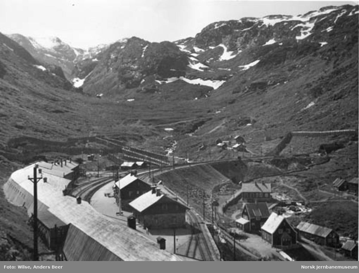 Myrdal stasjon : oversiktsbilde