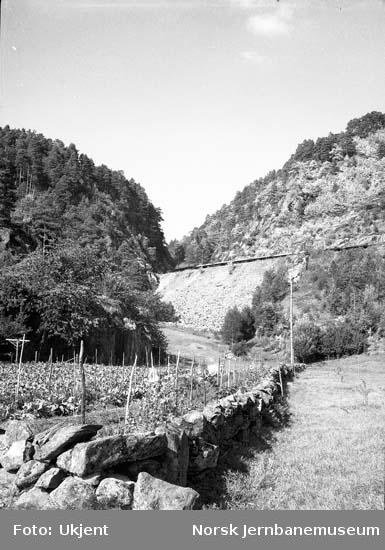 Sørlandsbanens linjeføring i nærheten av Audnedal