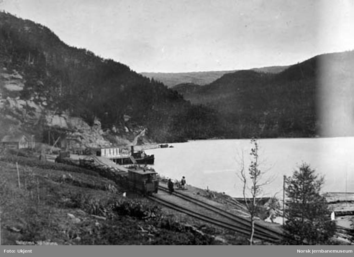 Hellarmo stasjon med ankommet kistog