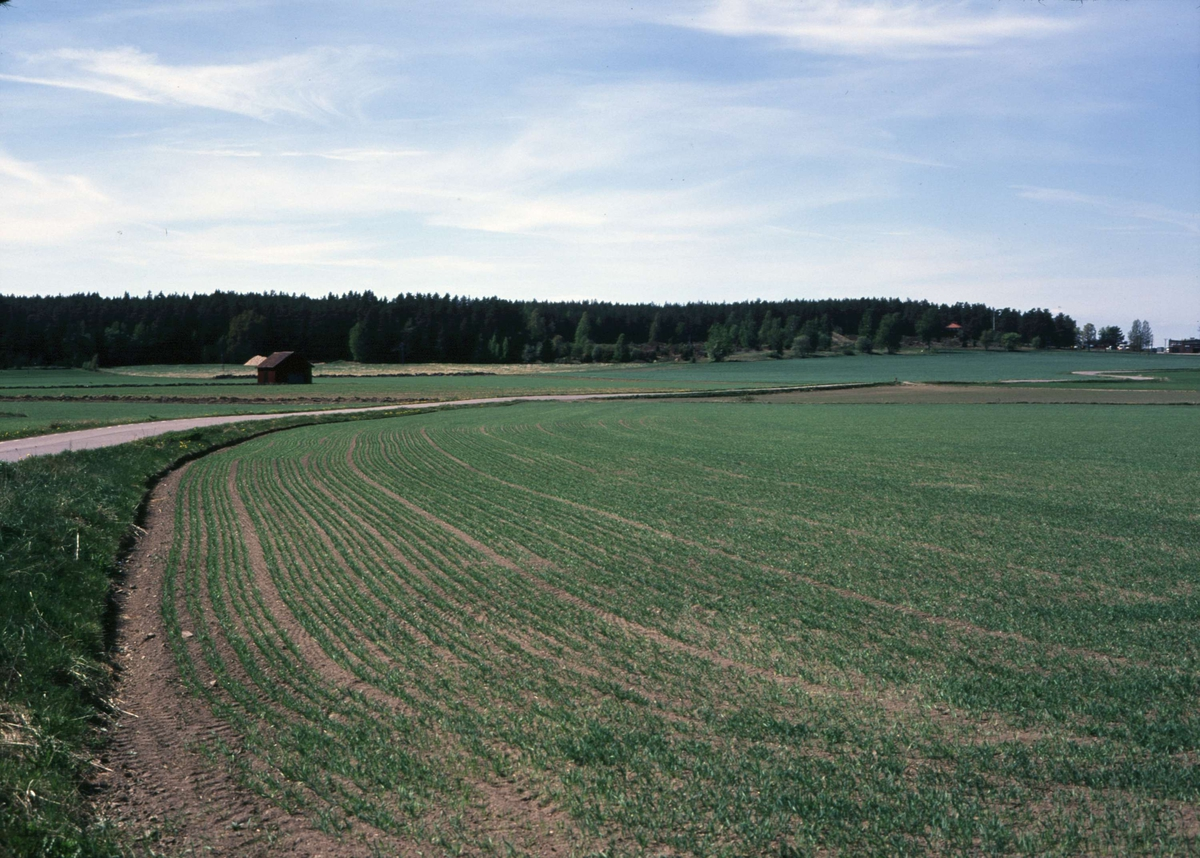 Odlingslandskap i Åkra, Vendels socken, Uppland