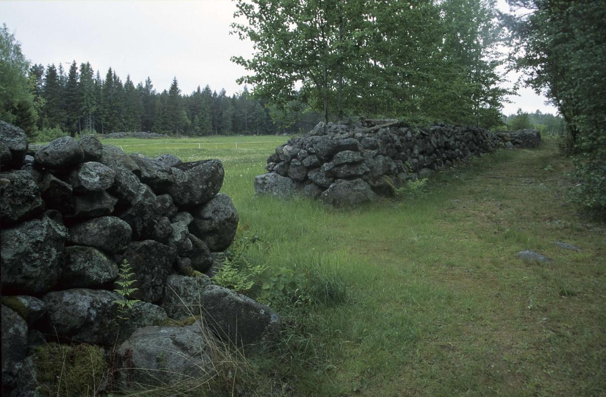 Landskapsvy med stenmurar, Hållen, Hållnäs socken, Uppland 2000