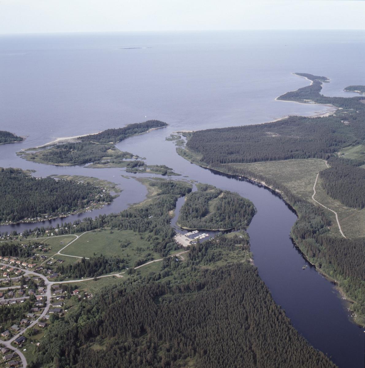Vy över Dalälvens mynning vid Rotskär, Älvkarleby socken, Uppland, juni 1989