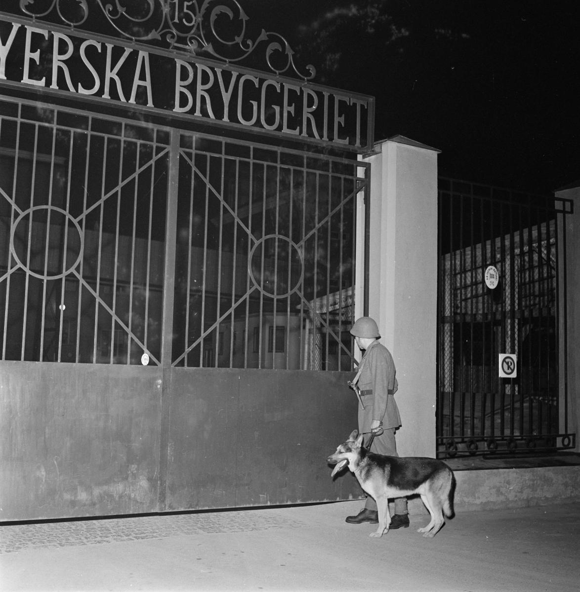 Nattvakt med hund vid Upsala Bayerska Bryggeri i kvarteret Sandbacken, Dragarbrunn, Uppsala