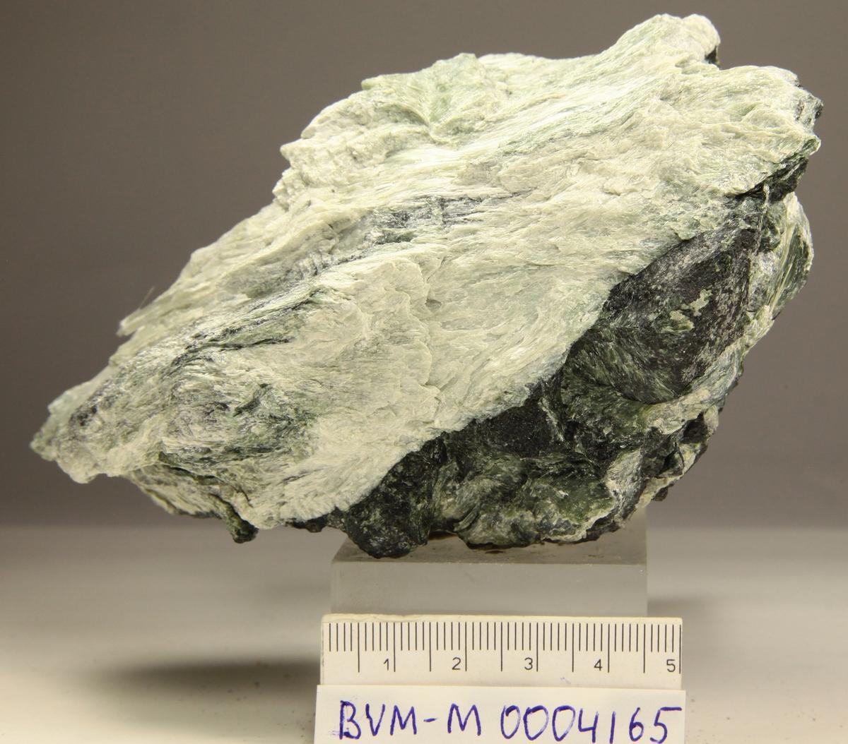 Tremolitt, kloritt, biotitt. Asbestodden, Rechercherfjorden.