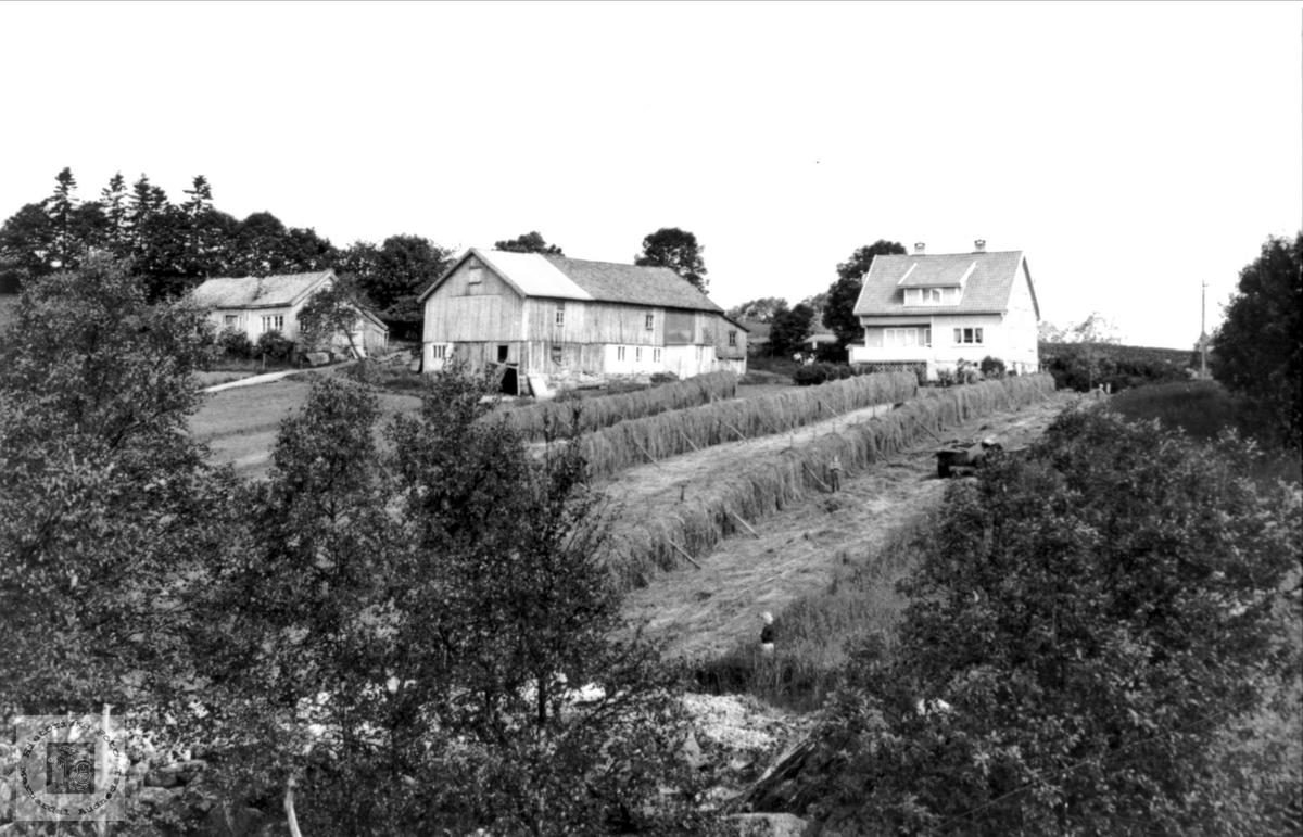 Haraldstad i Bjelland