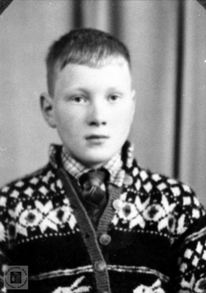 Portrett av Per Einar Stedjan, Bjelland.