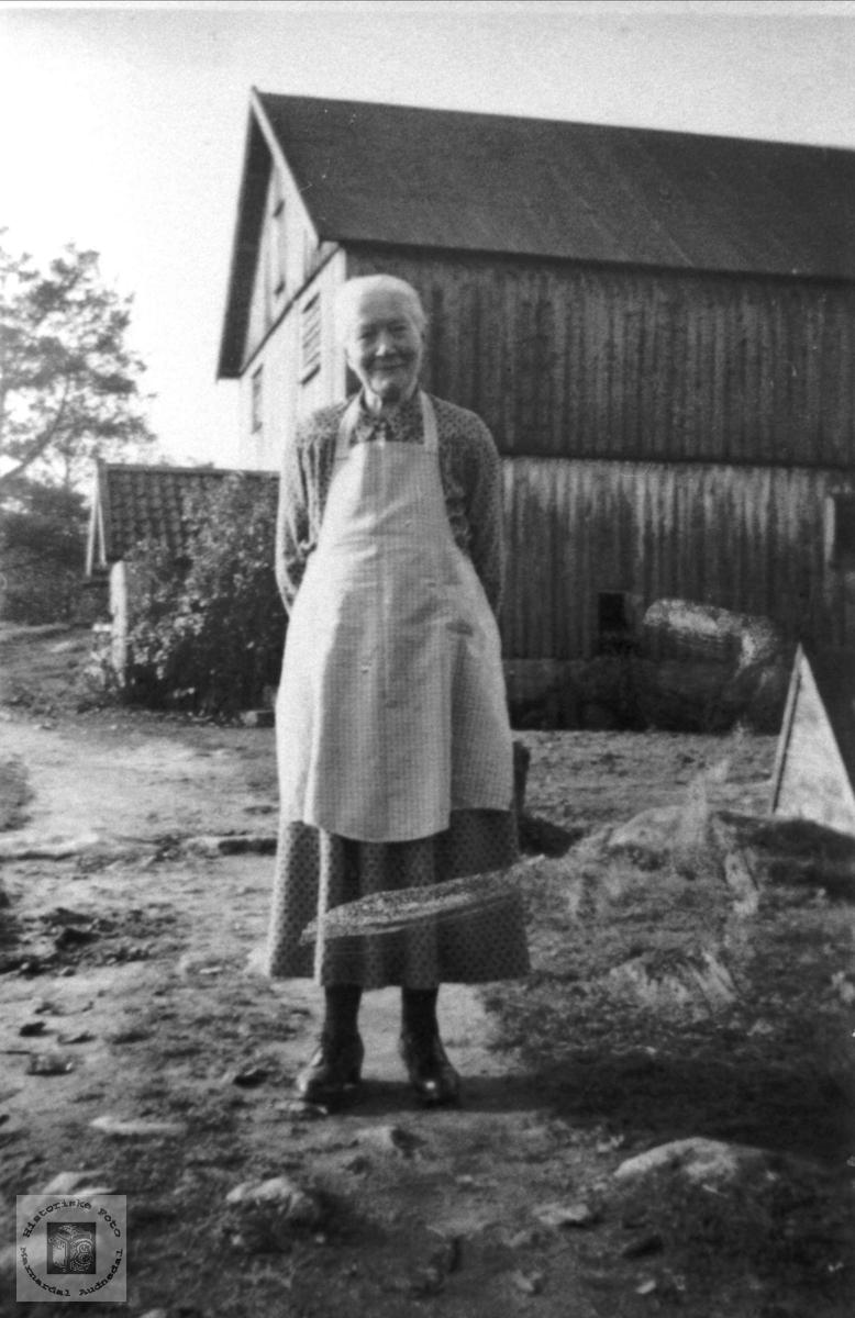 Farmor på tunet, Mønsås, Laudal.
