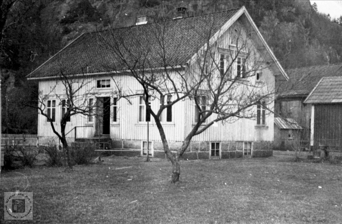 """""""Tuptan"""", Heddeland i Øyslebø."""