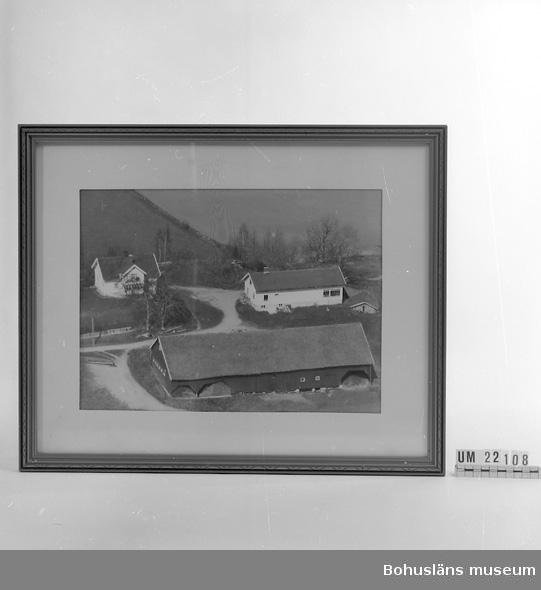 Ramat fotografi på gården Hasselberget