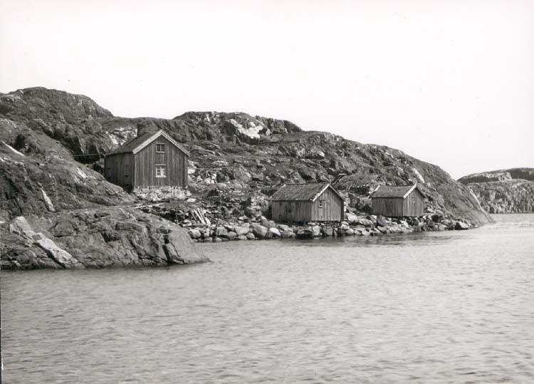 """Noterat på kortet: """"Ingegerdsholm Tjörn."""" """"I - utdött fiskeläge nära Skärhamn."""" """"Foto (D13) Dan Samuelson 1924. Köpt av dens. Dec. 1958."""""""