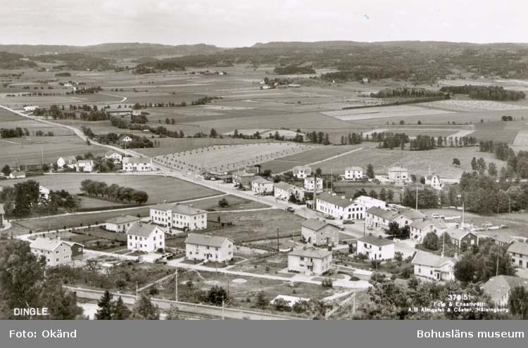 """Tryckt text på kortet: """"Dingle."""" """"Förlag: A/B J. F. Hallmans Bokhandel, Uddevalla."""" Noterat på kortet: """"Dingle Svarteborg Sn."""" """"Utsikt mot söder över Dingleslätten."""" """"21 Juli 1955."""""""