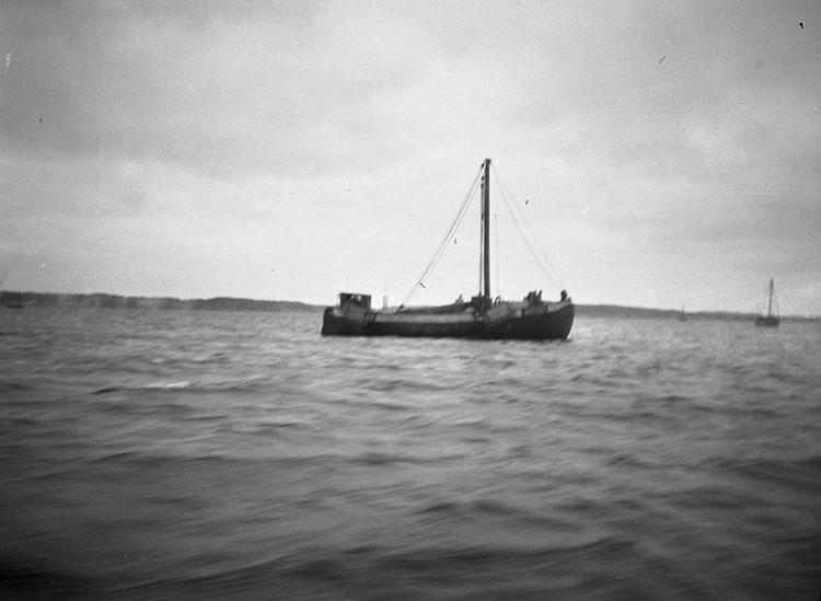 Trålare på Gullmarsfjorden