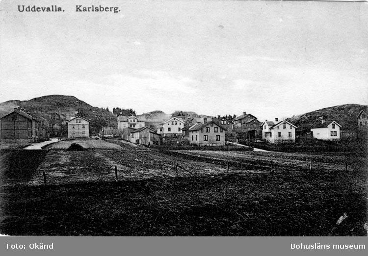 """Tryckt text på vykortets framsida: """"Uddevalla Karlsberg.""""  ::"""