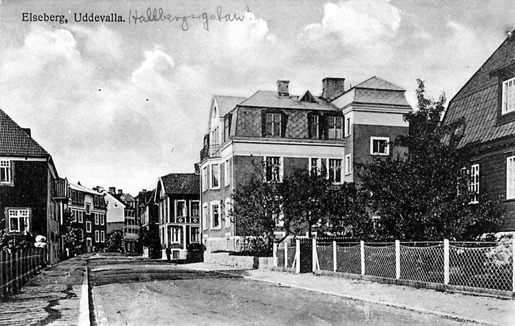Villor på Hallbergsgatan i Uddevalla
