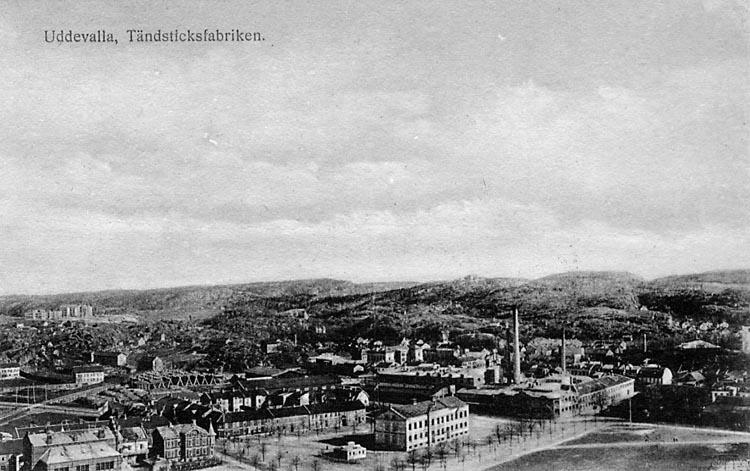 """Tryckt text på vykortets framsida: """"Uddevalla, Tändsticksfabriken.""""  ::"""