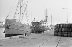 Lastning av tunnor för Islandsfiske 1963