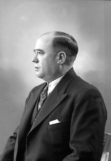 "Enligt fotografens journal nr 6 1930-1943: ""Ringmark, Herr Svanesund""."