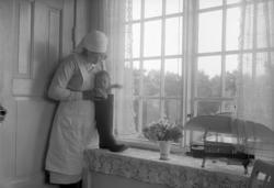 "Enligt fotografens journal nr 6 1930-1943: ""Aspegren, sköter"