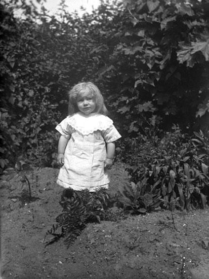 """Enligt senare noteringar: """" Astrid Andersson. Taget i Zachrissons trädgård, Lilla Nygatan. 16/6 1915."""""""