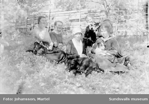 Kvinnor sitter i gräset, samt hund. Ev. systrarna Persson.