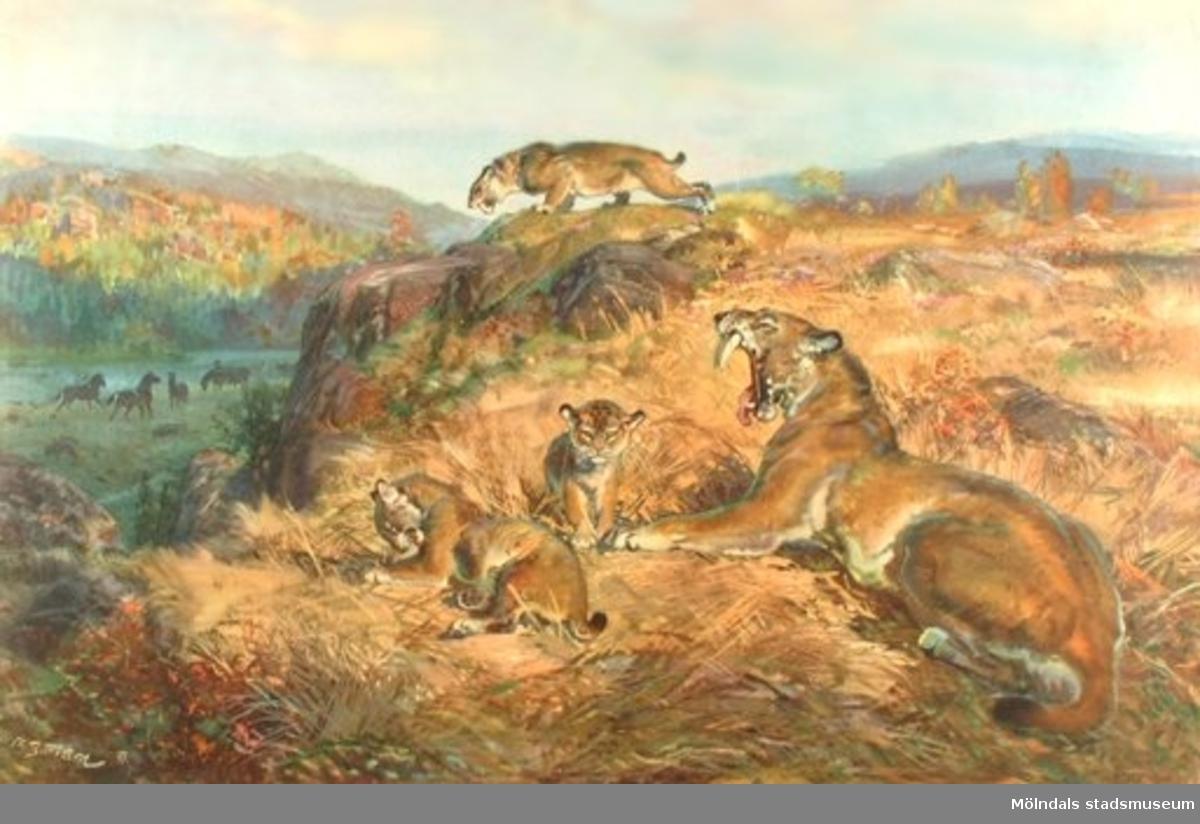 :1: Från silurtidens hav.:2: Landskap från juratiden, sabeltandad tiger.:3: Landskap från kvartärtiden, mastodonter.Samhör med: MM 20154 och MM 20155