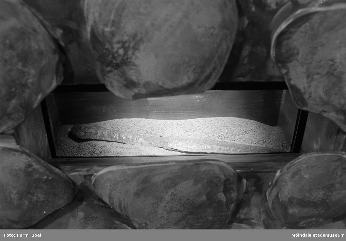 Mölndals museums basutställningar: Svärd från bronsåldern.