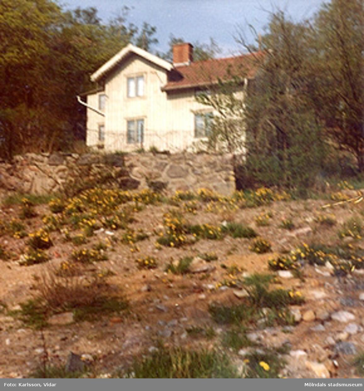 Bostadshuset Roten F25, Trädgården.