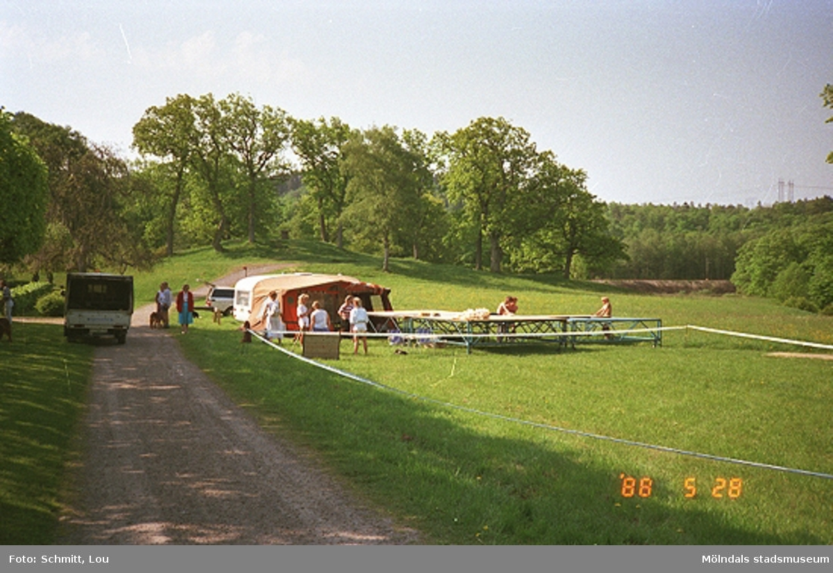 Några människor som sätter upp tält och bord inför hunddressyr vid Gunnebo slott.