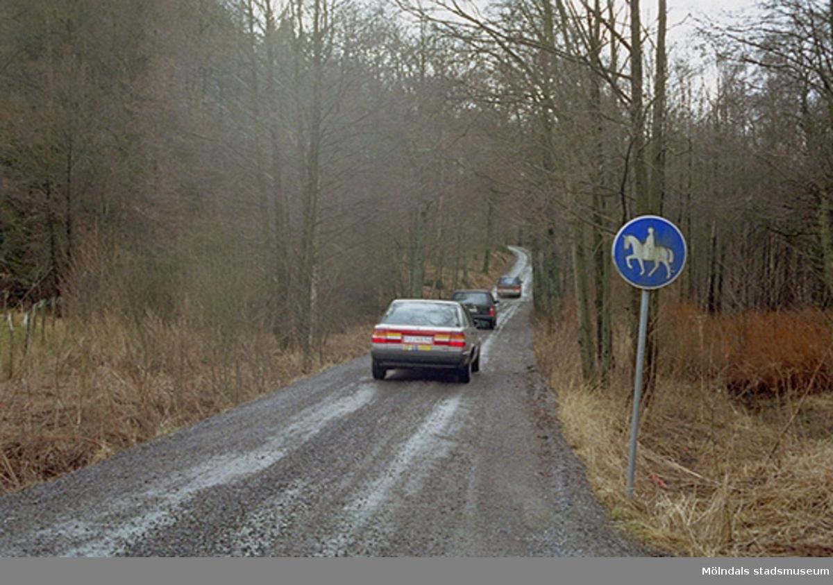 Vägen upp mot Gunnebo ladugård 1995-02-17. Man ser själva uppförsbacken.