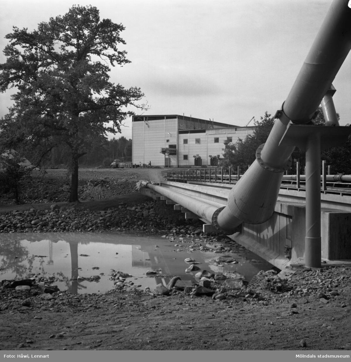 Fabriksbyggnad vid Hylte bruk, 12/9 1968.