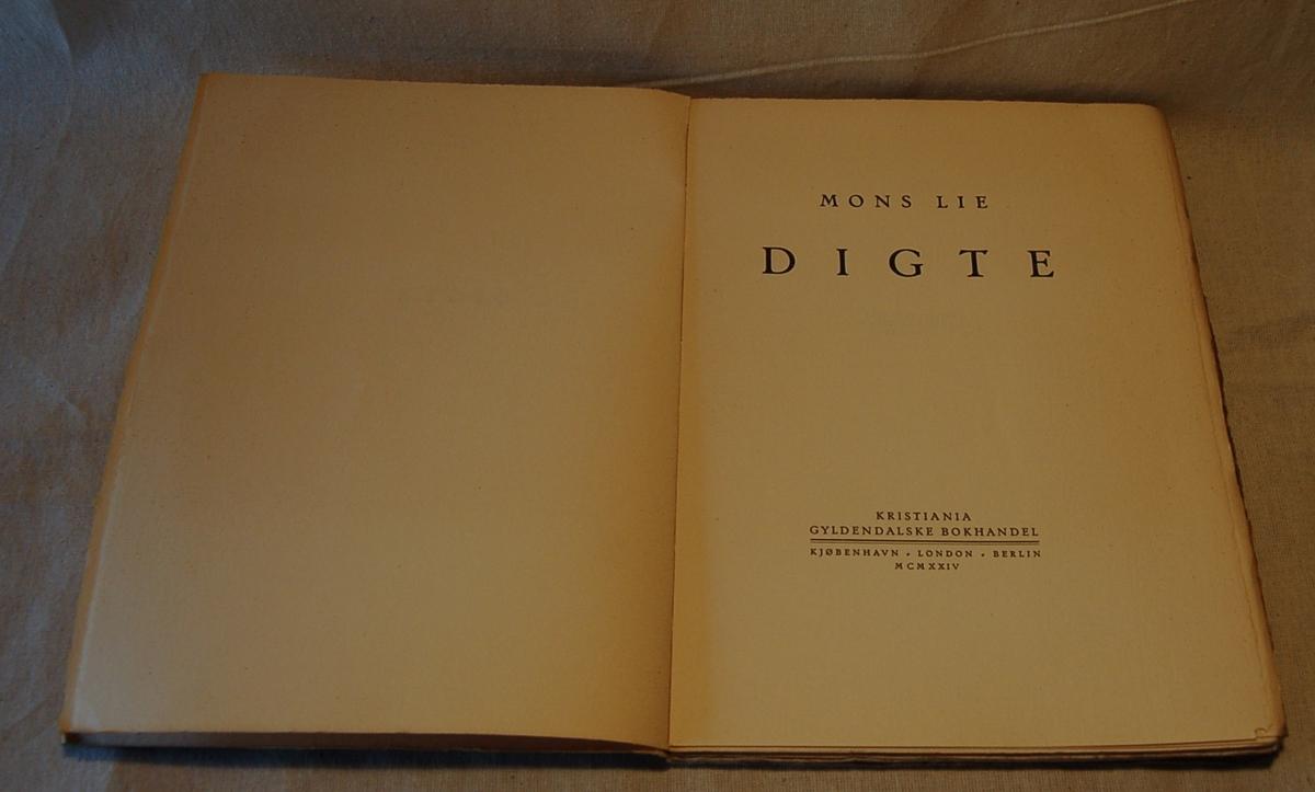 På bokens forside er et motiv med en fugl og en profil av hode nede i et vann.