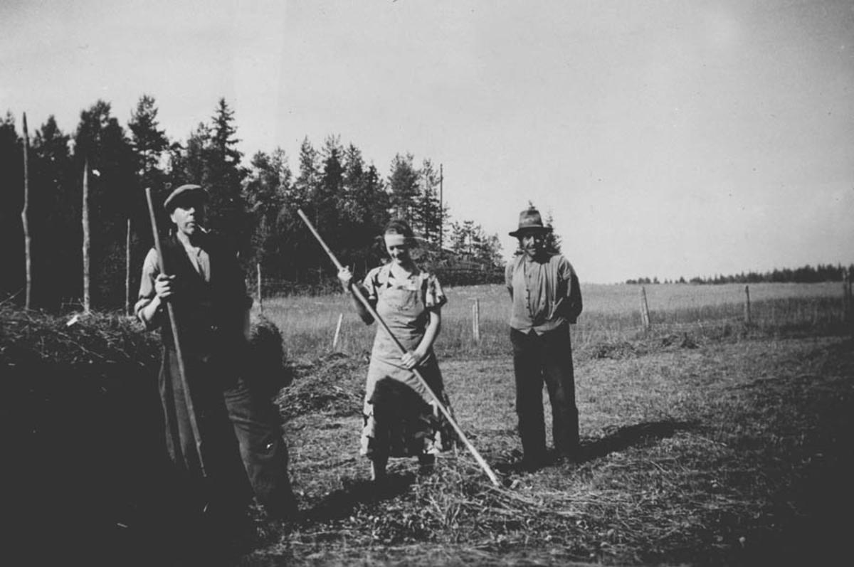 Gruppe. Fra v.: Harald Hansen, Alvhilde Spong og Iver Hansen